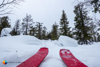 Skis | by HendrikMorkel