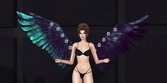 Royal Angel Wings - Fashion Dream