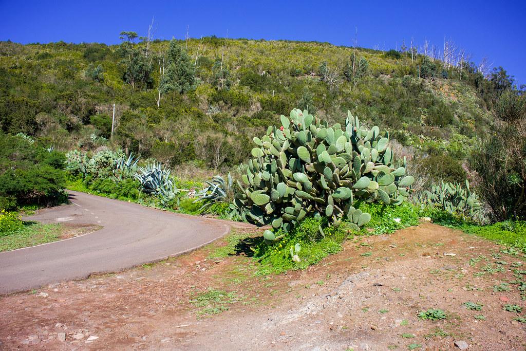 Zona aparcamiento para iniciar el sendero Monte de Aguirre