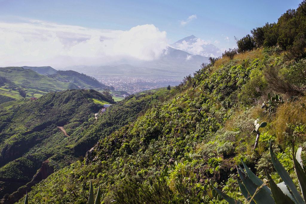 Vista del Teide desde Monte de Aguirre en Tenerife