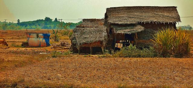 MYANMAR, Burma- Unterwegs , auf der Fahrt nach Naypyidaw, 78108/13283