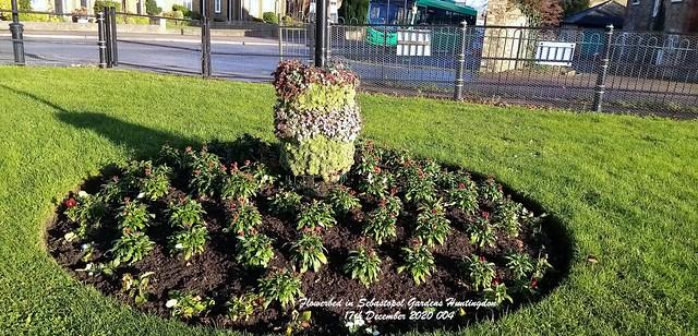 Flowerbed in Sebastopol Gardens Huntingdon 17th December 2020 004