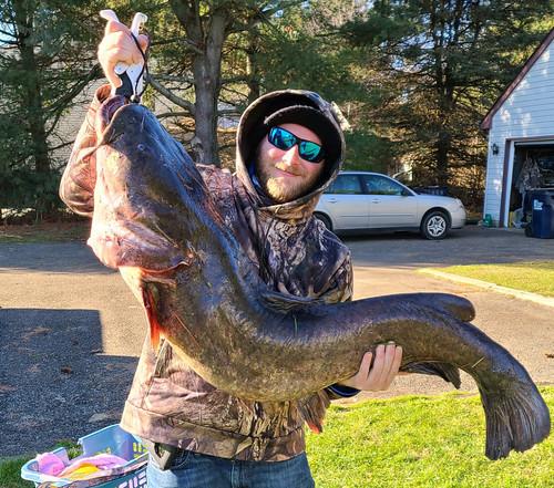 Photo of man holding large flathead catfish