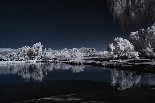 infrared infraredphotography convertedinfraredcamera ir channelswapping reflections trees view highcontrast composition lindolake