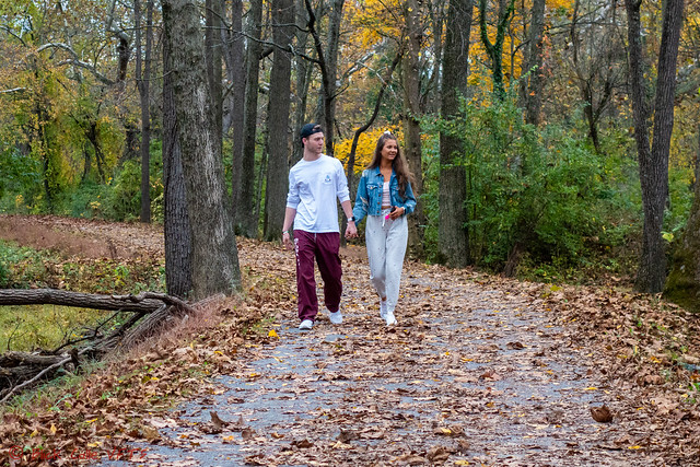 Autumn Stroll on the Trail