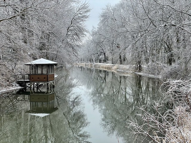 Winter in Indiana (3)