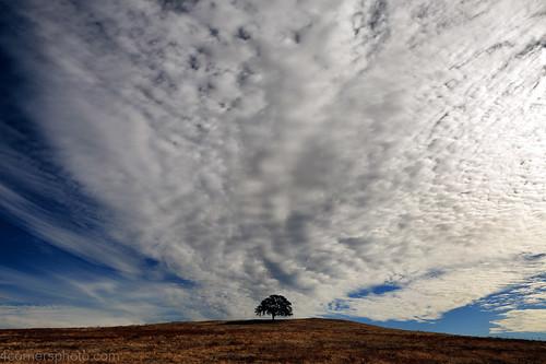 4cornersphoto autumn calaverascounty california centralvalley clouds fall hill landscape motherlode nature northamerica oak outdoor rural sanjoaquinvalley scenery sky tree unitedstates valleyoak weather valleysprings