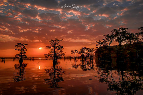 caddolake easttexas texas texaslakes louisiana louisianalakes clouds sunrise sunset sunrisereflection reflection dramaticsky treesilhouette godsglory uncertaintx