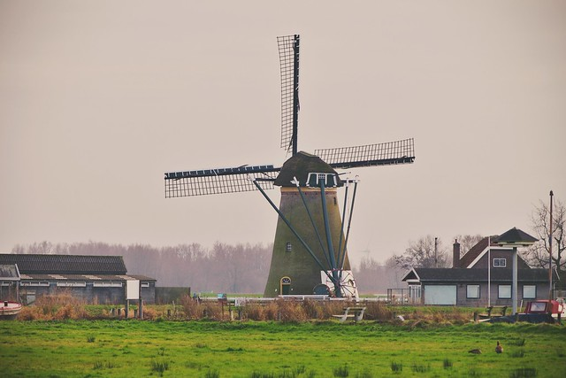 Windmill(s)