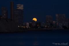 Última luna llena del 2020 dede Alicante