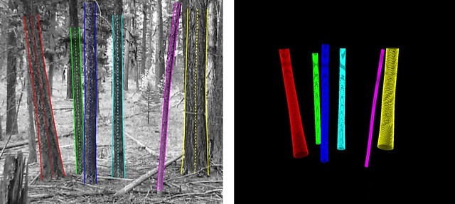 Artificial intelligence software simultaneously measures and maps trees