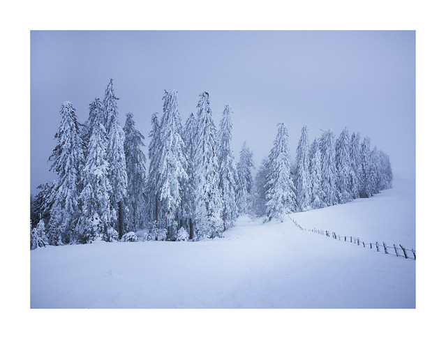 L'aubrac sous la neige