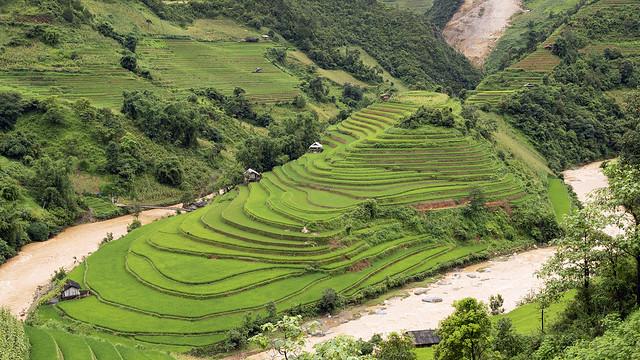 Mu Cang Chai, Yen Bai province Vietnam