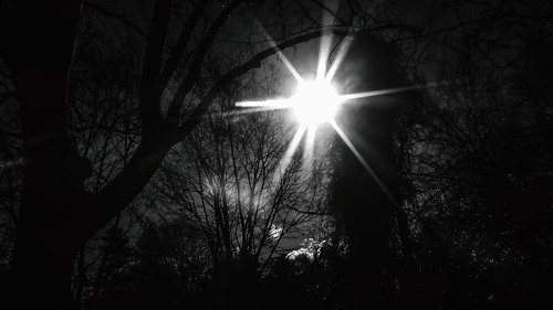 sun solar brightness brilliance city urban blackandwhite monotone monochrome bn bw contrast texture trees sunrise dawn daybreak sunup leadonoso