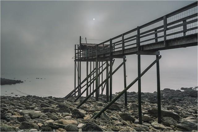 Brouillard hivernal