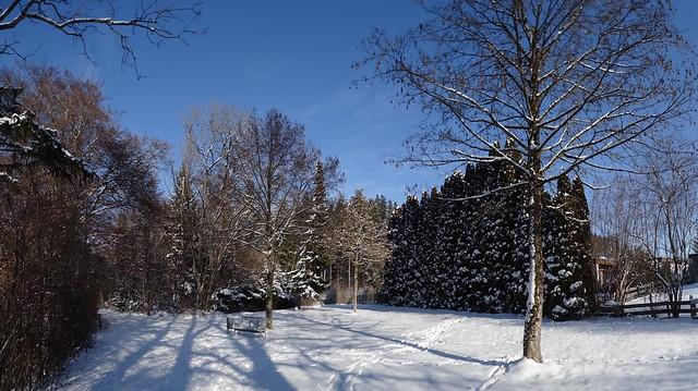 DSC01894 Wintertag Oberbayern
