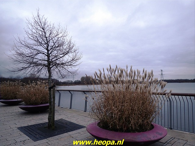 2021-01-06   Nieuwjaars wandeling. Almere   (79)