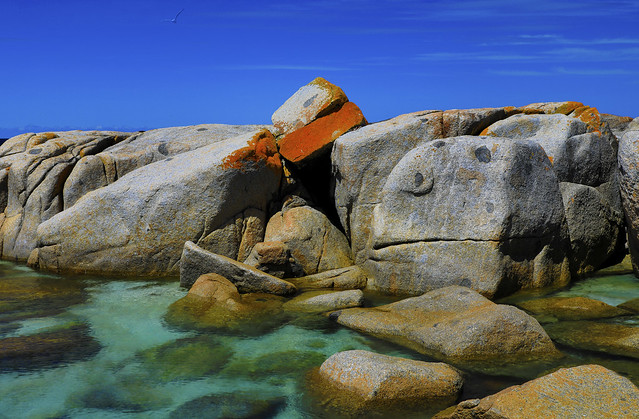 Bay of Fires : Spring afternoon . . .