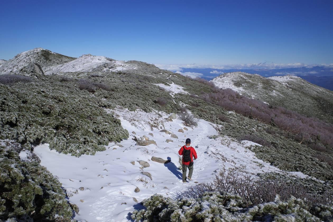 将棊頭山から西駒山荘へ