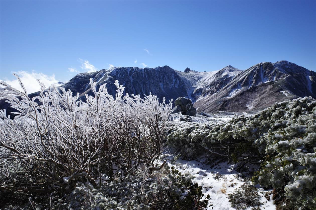 将棊頭山 霧氷の稜線登山