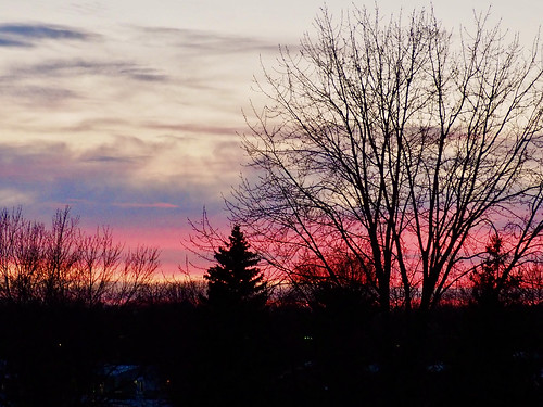 sunsetsgetbetterbetter sunset sky sunsetskies sunsets sunsetoutlines sunsetclouds sun awesomenature awesomeskies beautifulnature wonderfulnature trees treesilhouettes treebranches tree treesinsunsetskies montrealsuburbs