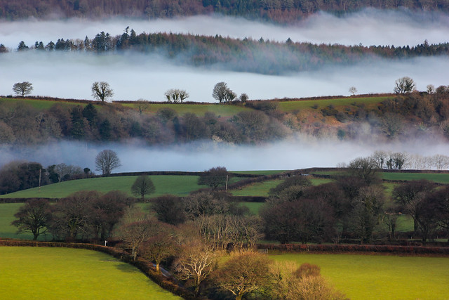 Mist towards Meadwell