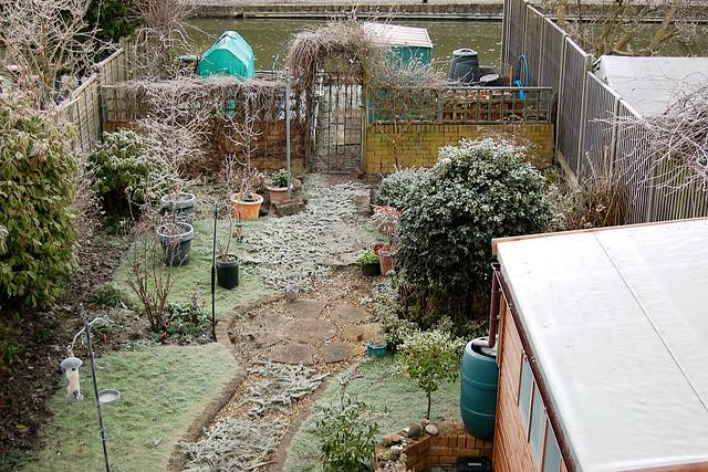 Back Garden - January 2021