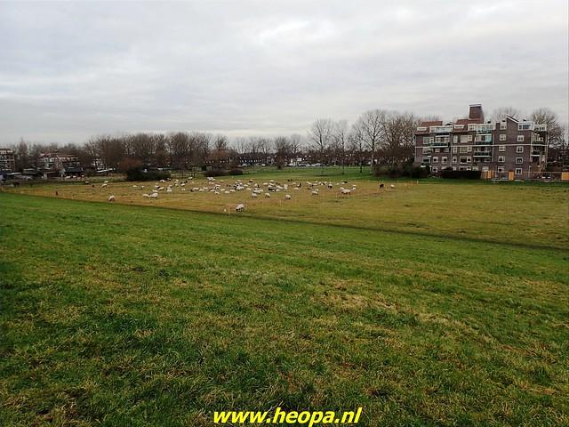 2021-01-06   Nieuwjaars wandeling. Almere   (6)