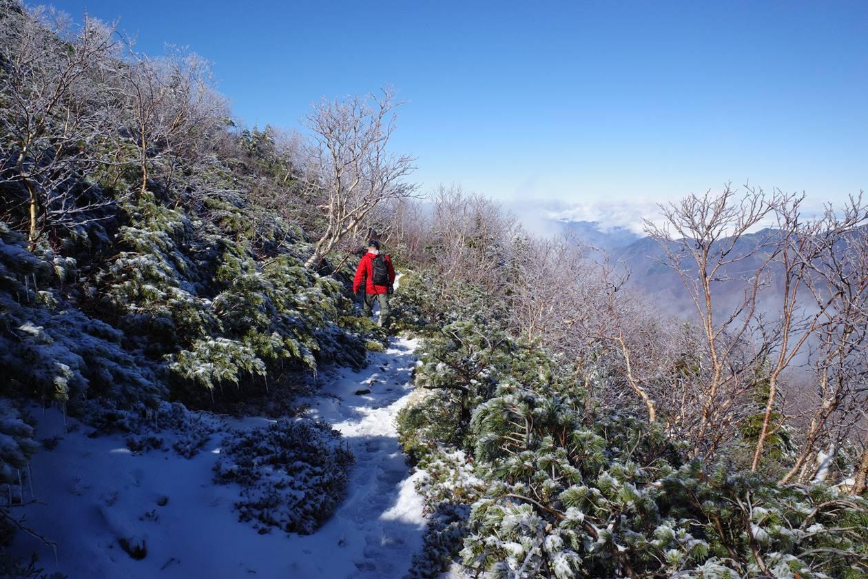 将棊頭山 雪の登山道