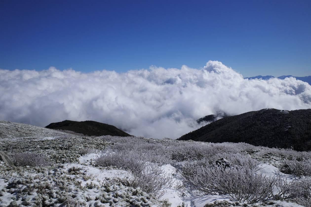 将棊頭山 雲海と霧氷
