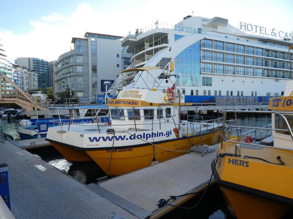 Dolphin Adventures, Gibraltar