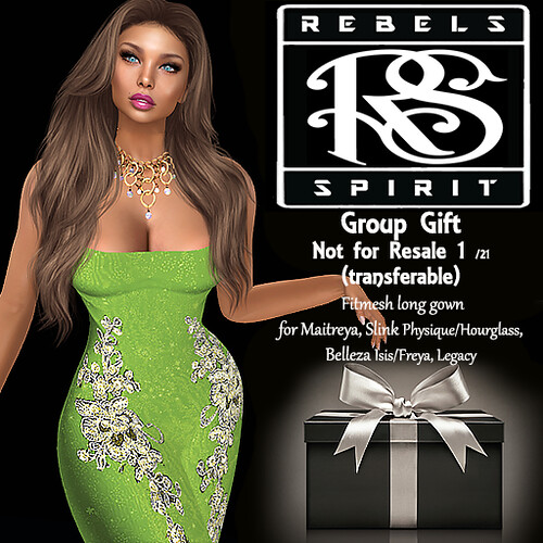 RebelsSpirit Group gift NorForResale Transferable