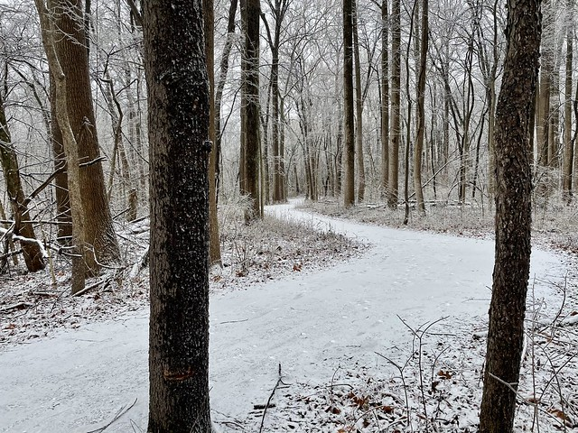 Winter in Indiana (5)