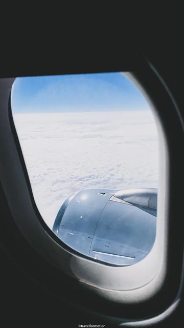 window-19