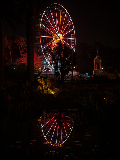 Reflecting Ferris wheel, golden gate park