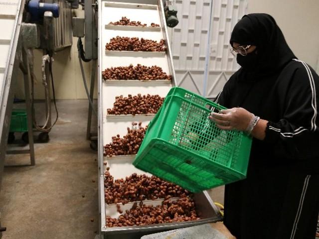 5881 Meet the Saudi women running a date factory 06