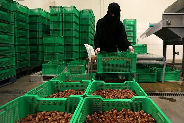 5881 Meet the Saudi women running a date factory 02