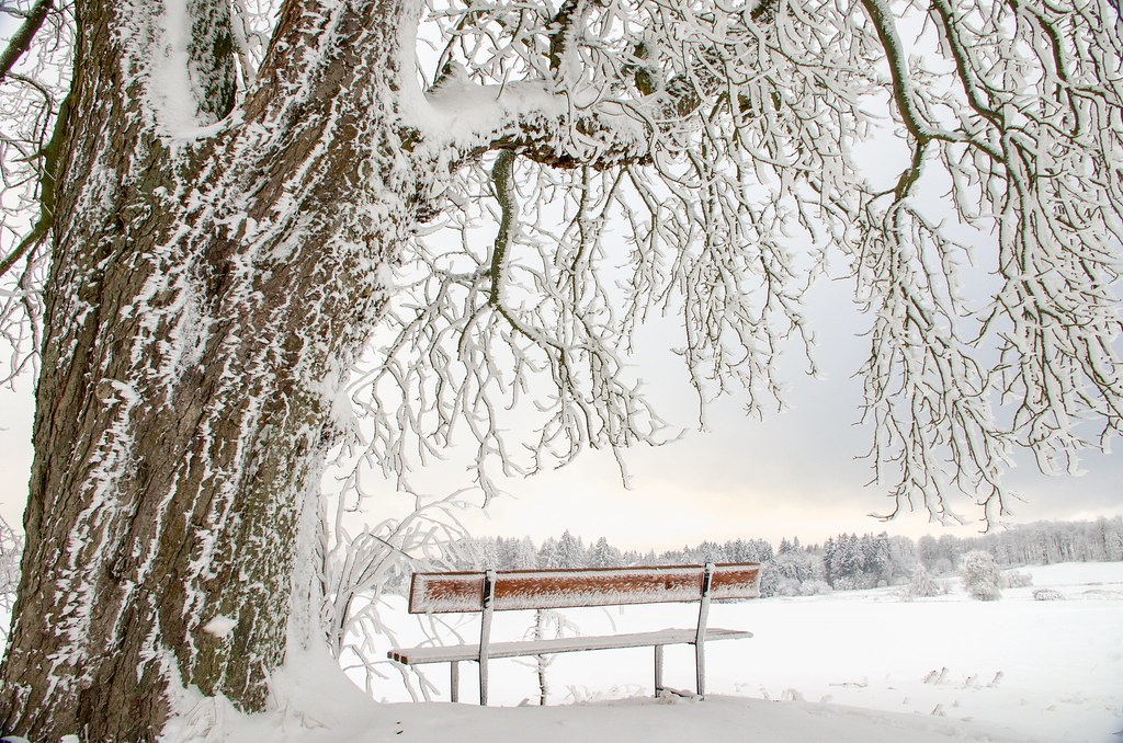 Viewpoint in winter