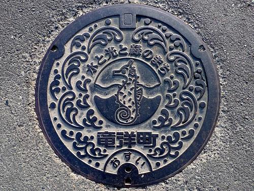Ryuyo Shizuoka, manhole cover (静岡県竜洋町のマンホール)