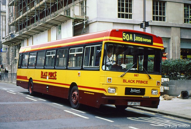 CUP667S Black Prince 667