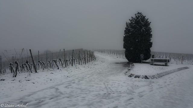 Rastplatz im Schnee