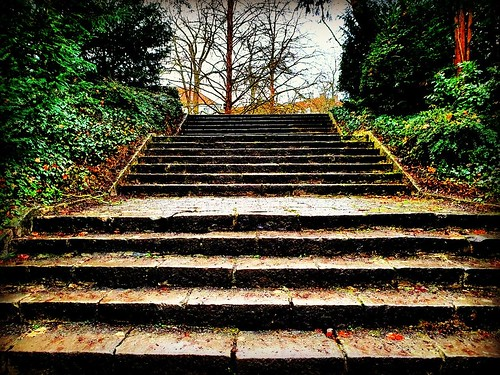Step by Step... | by piccolinaa