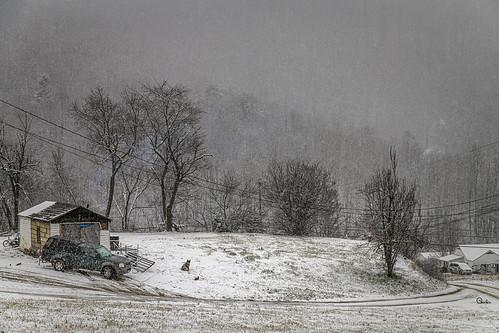 snow dog garage appalachia wv westvirginia monroecounty landscape winterscene winter bobbell nikon d850 weather truck pickup snowstorm