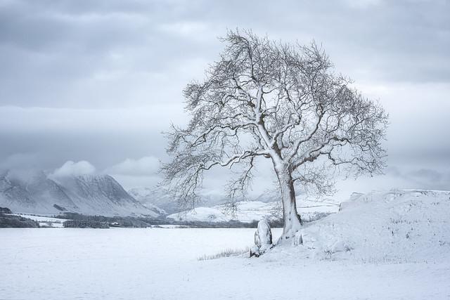 winter (explore)