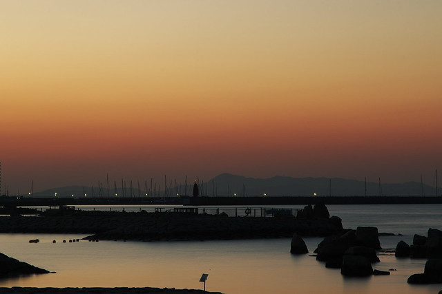 IMG_5951・せんなん里海公園-Sennan Satoumi Park