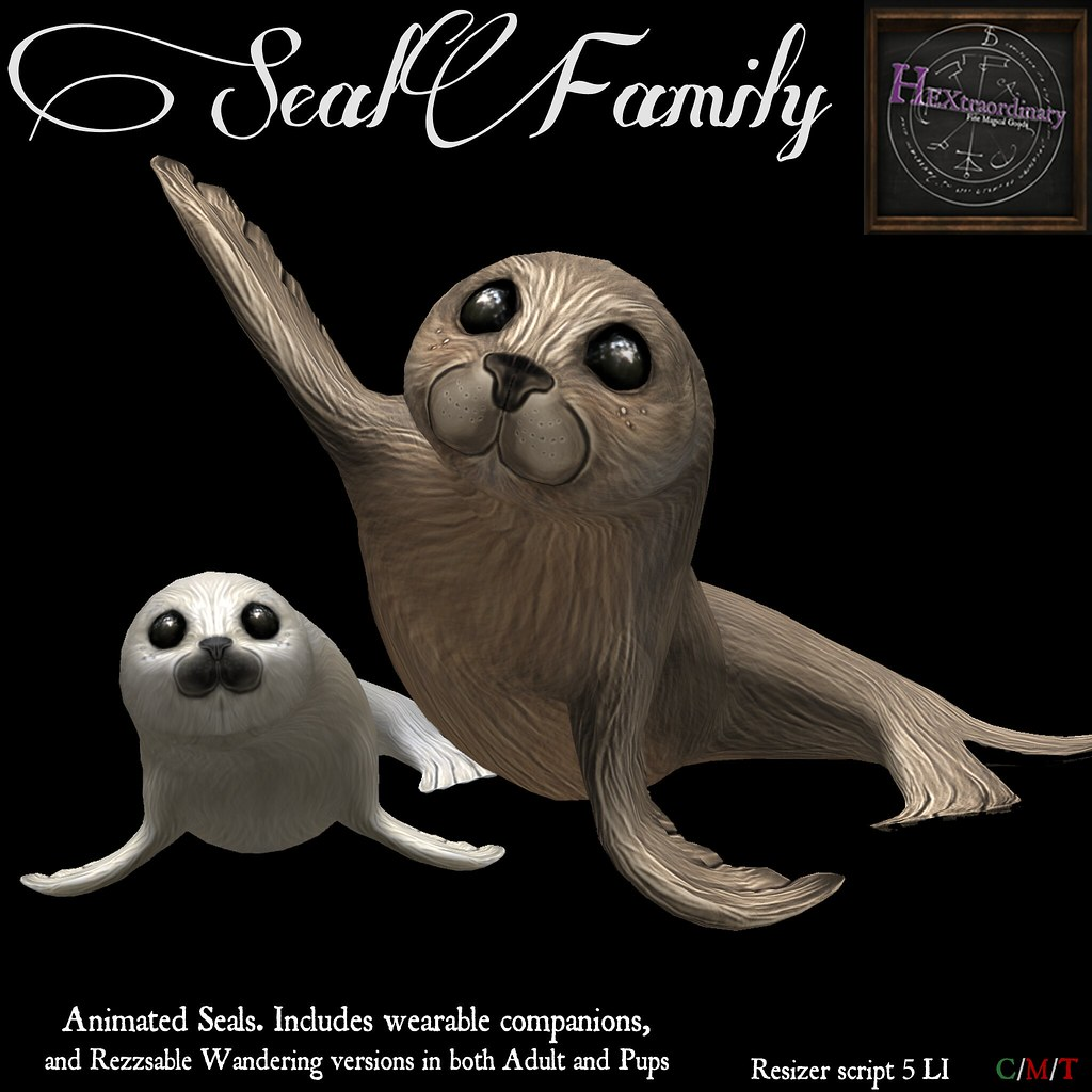 HEXtraordinary - Seal Family - Wanderlust Weekend