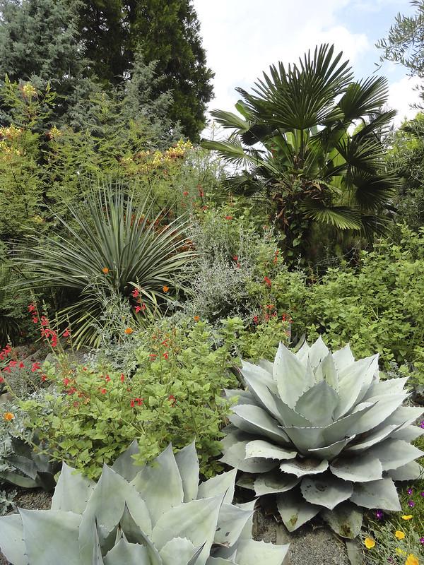 p204_Kuzma and Halme garden_Bohl