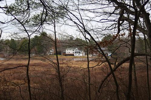 tree house pond lake wetland marsh swamp grass winter fosterspond goldsmithreservation reflection bushes cloudy landscape