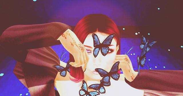 Butterflys 😉