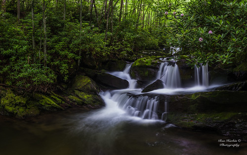 green e great smoky mountains national park gsmnp landscape frame full fx outdoor f28 24mm d750 nikon copyright black blue tree lightroom diffused light shade natural depth field pictures spring summer flower grass escape fairytale wonderland forest photographer golden hour travel sun prime water stream torrent flood river rock boulder covered moss pioneers settlers nikkor explore inexplore cascade waterfall panorama multi exposure breathtakinglandscapes